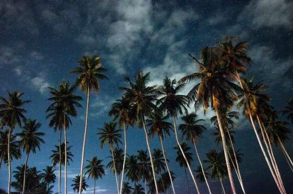 """Sao Tome """"undercover destination"""""""